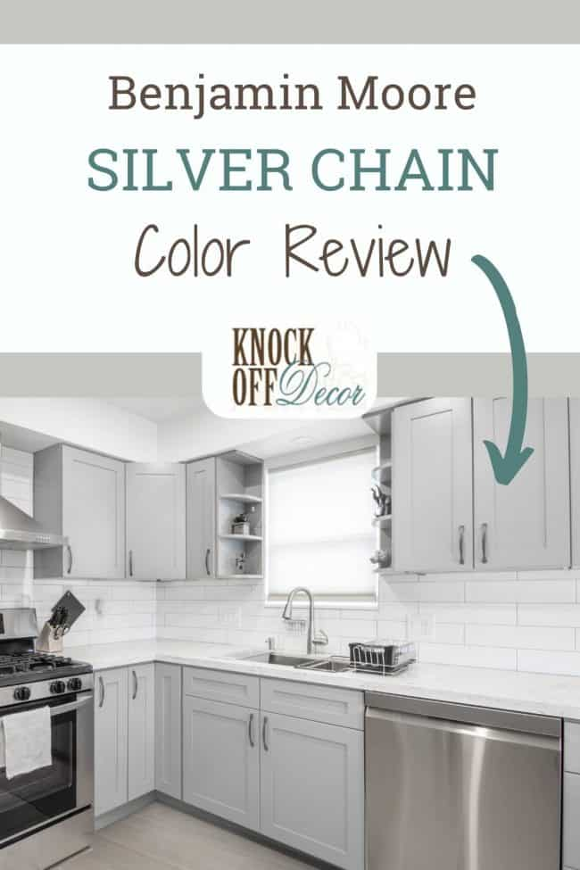 BM Silver Chain pin