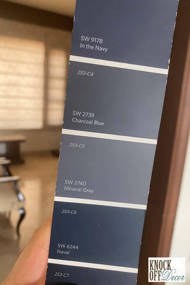 SW Navy Color Deck