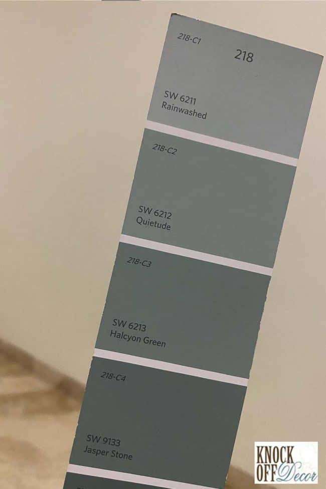 SW Rainwashed coordination Color Deck
