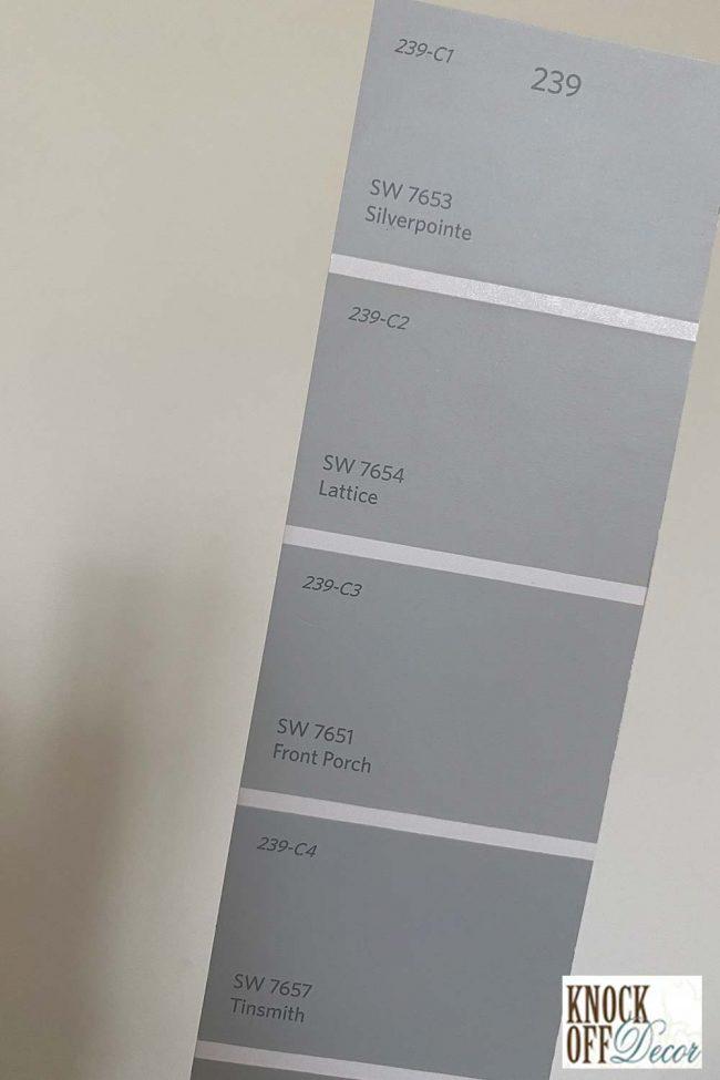SW Silverpointe Color Deck