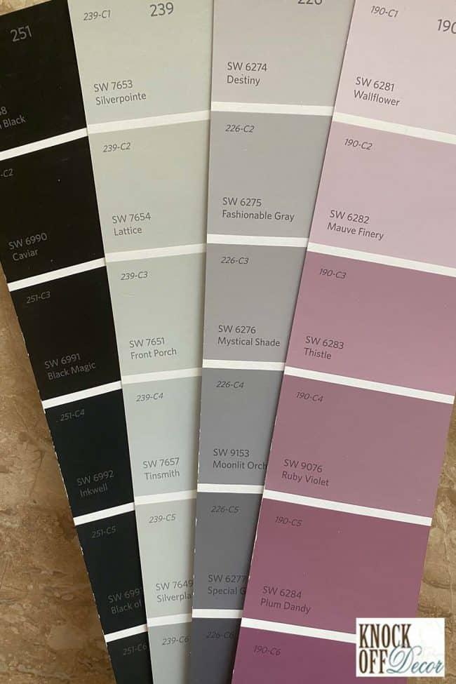 SW Silverpointe coordination Color Deck