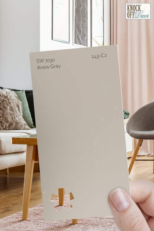 SW anew gray single paint chip
