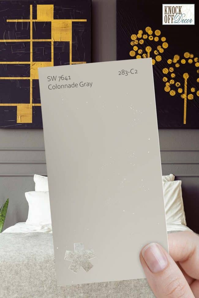 SW colonnade gray single paint chip