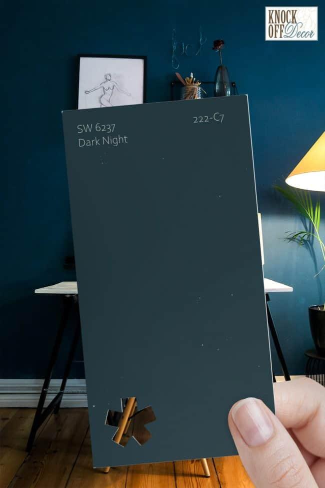 SW dark night single paint chip
