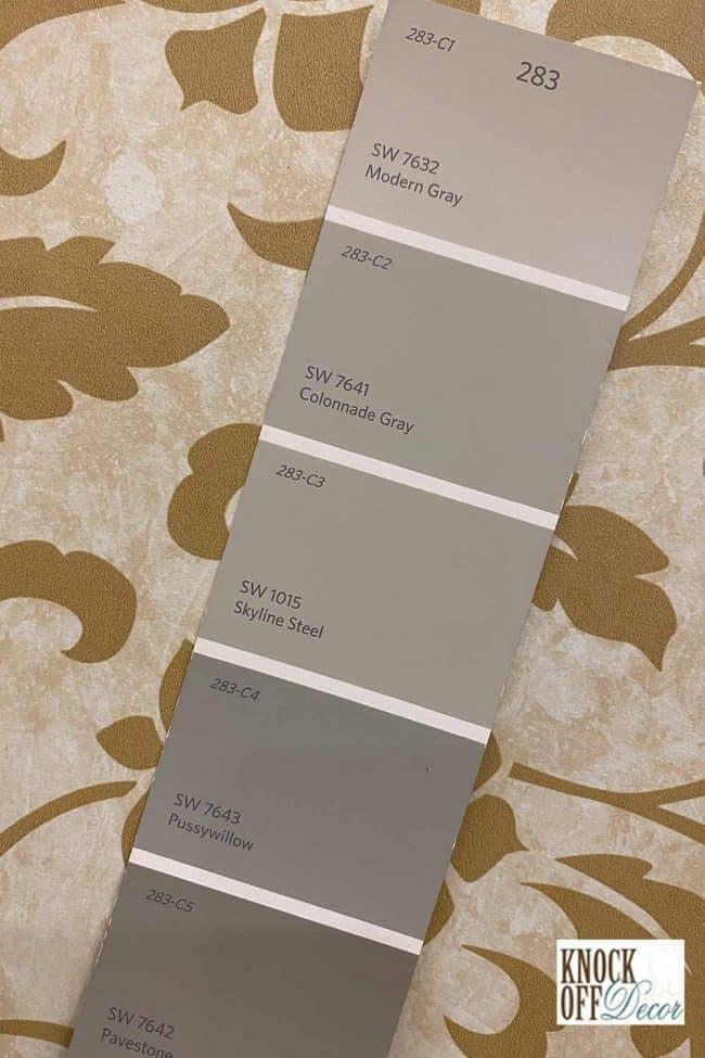 SW modern gray palette