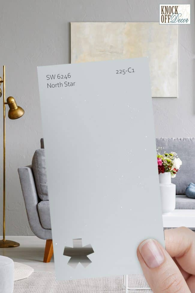 SW north star single paint chip