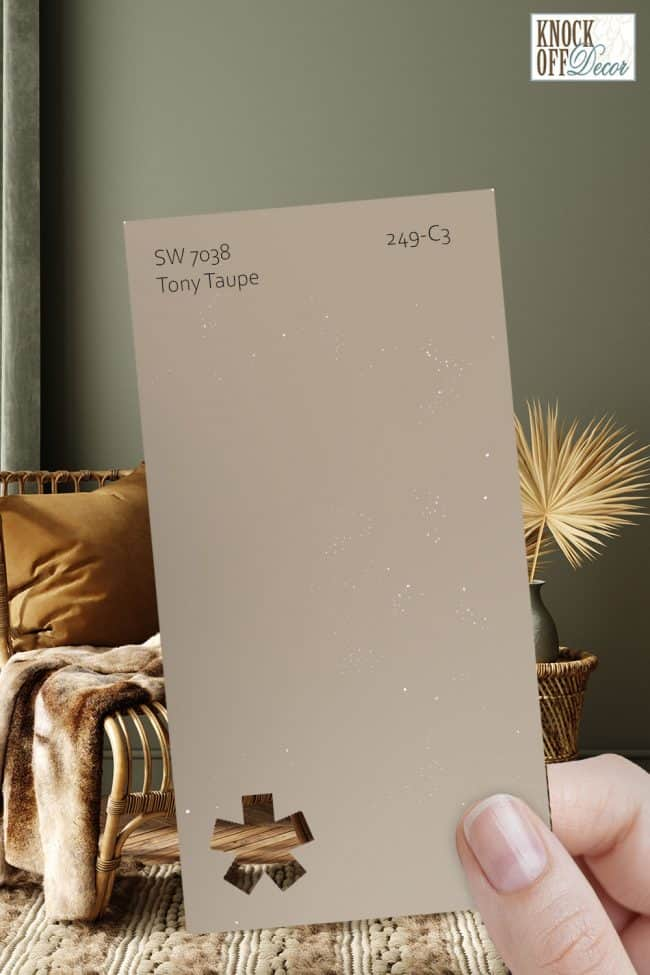 SW tony taupe single paint chip