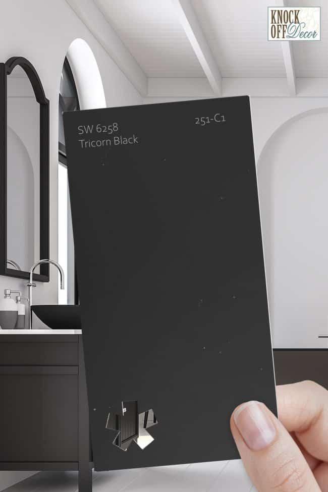 SW tricorn black single paint chip 1