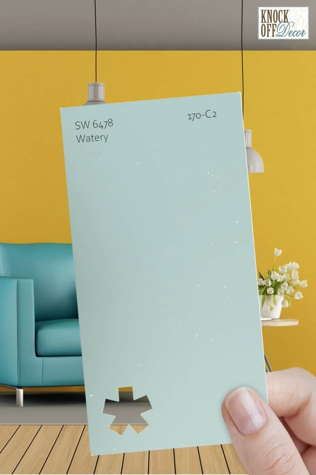 SW watery single paint chip