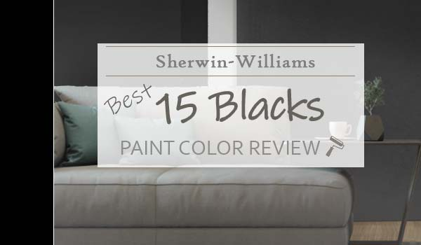 best sw blacks reviews