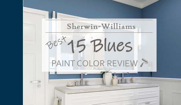 best sw blues reviews