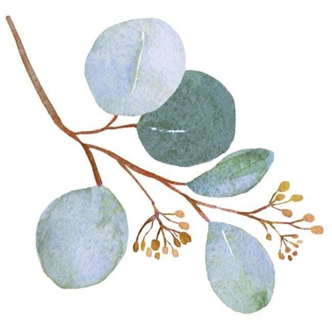 blueish leaf with buds