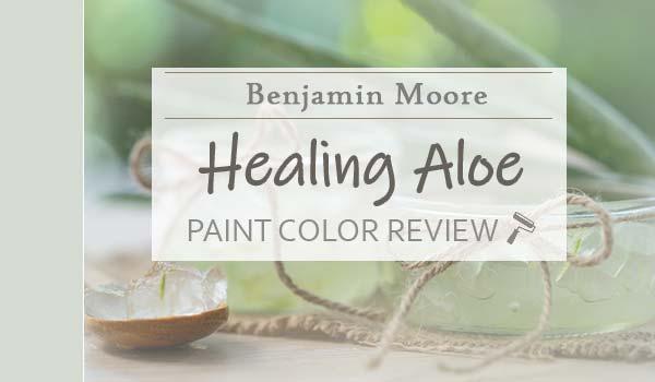 bm healing aloe featured image