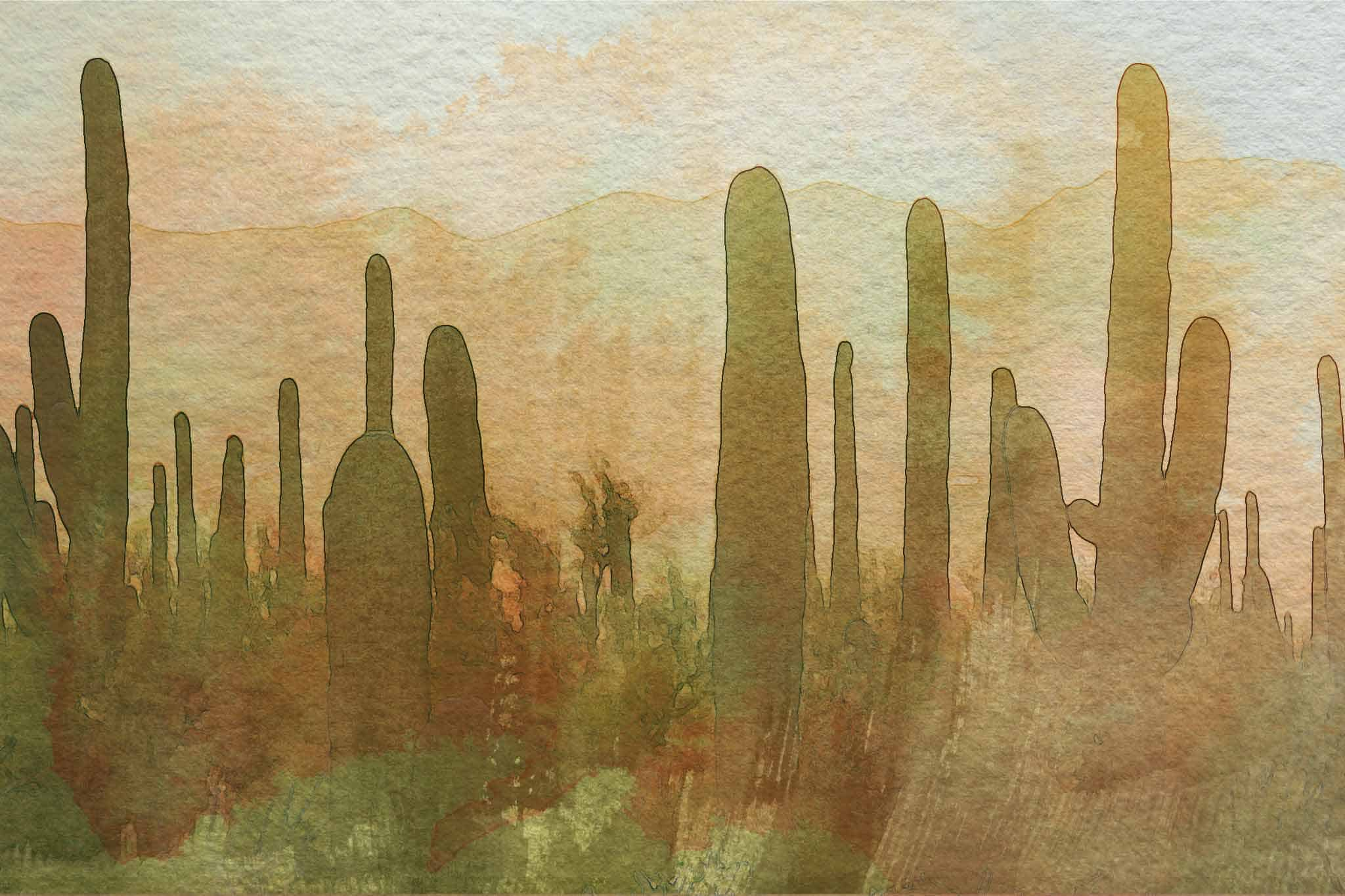 cactus graveyard wc