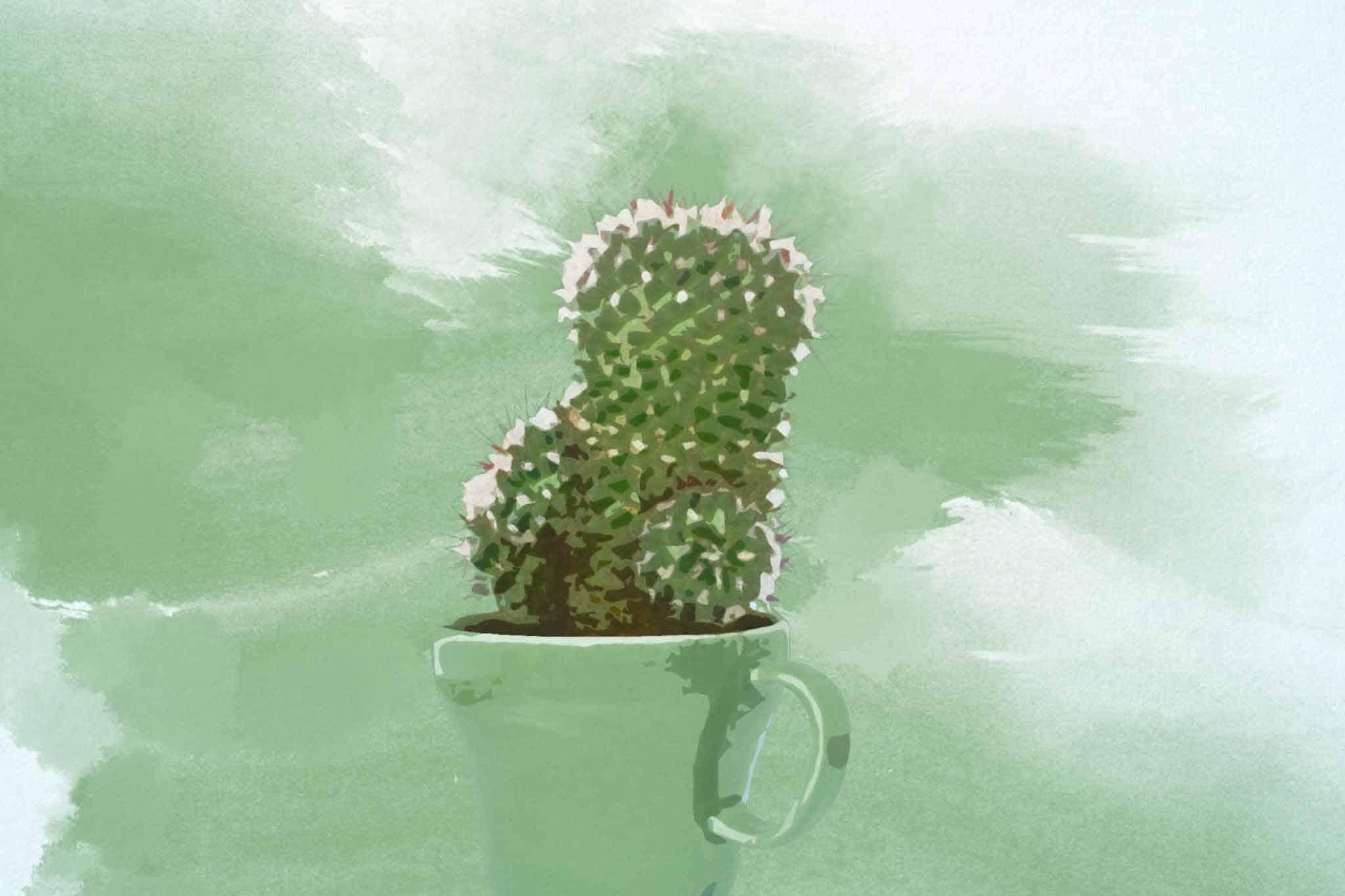 cactus green cup pot