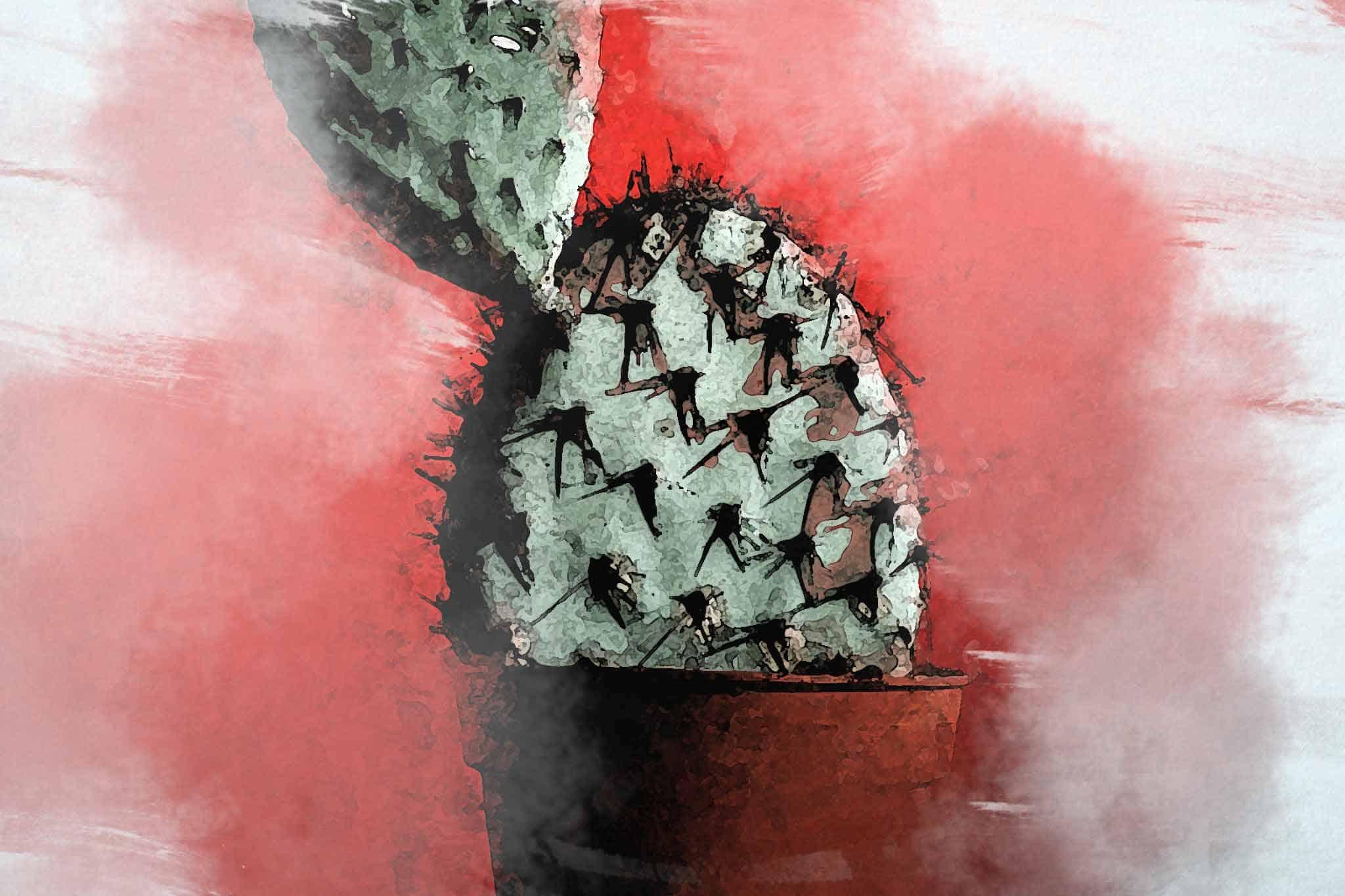 cactus green pot red