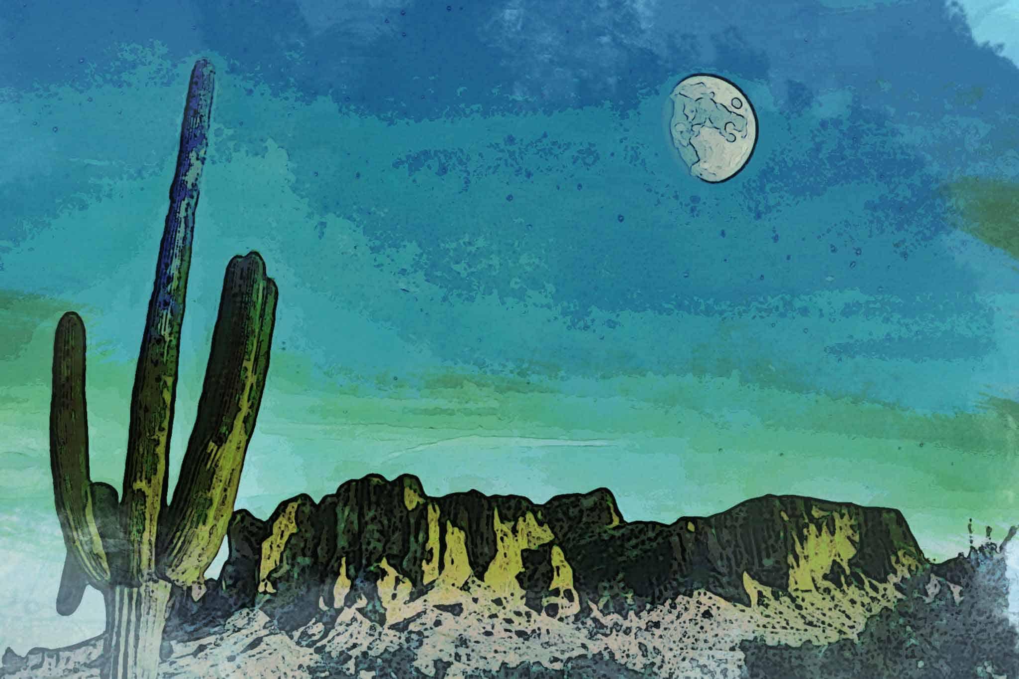 cactus new green mountain