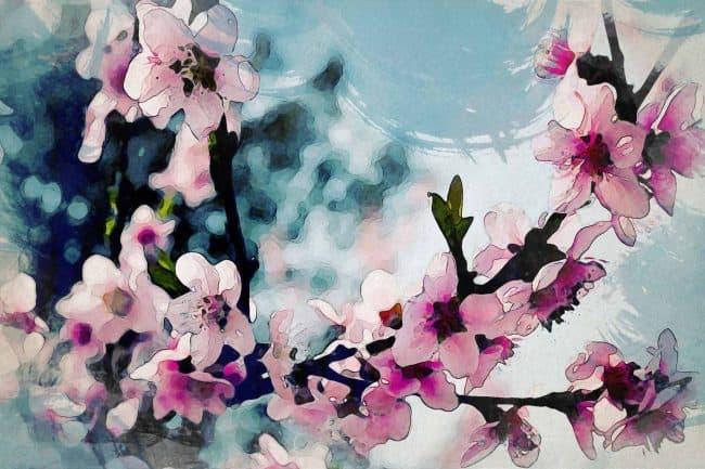 cherry blossom pink green purple
