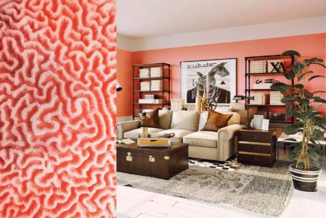 coral color in staged room