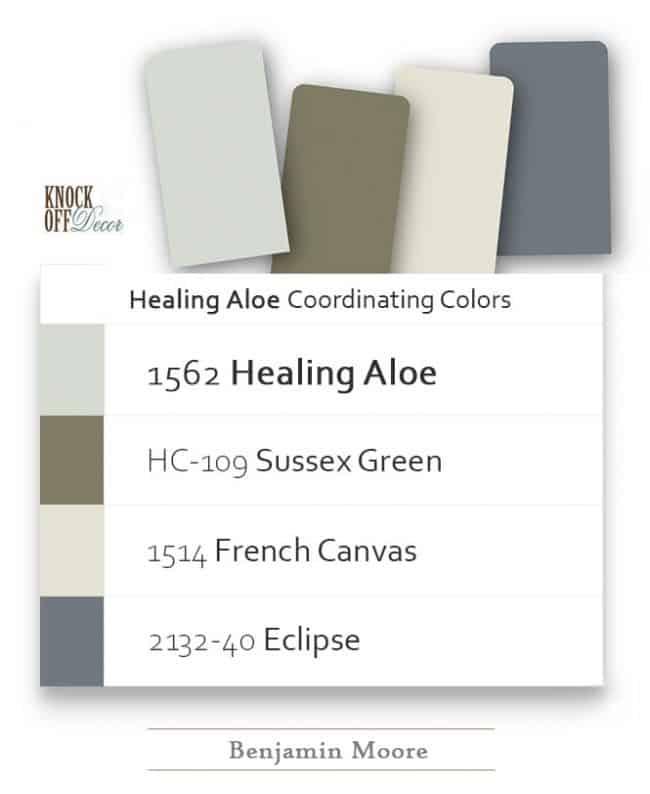 healing aloe coordination