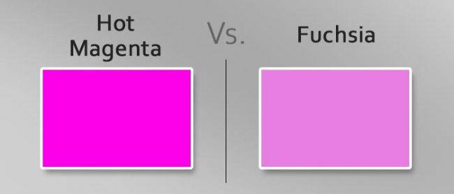 hot magenta vs fuchsia