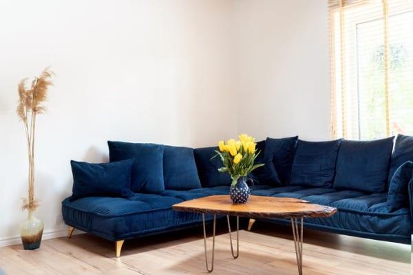 indigo furniture