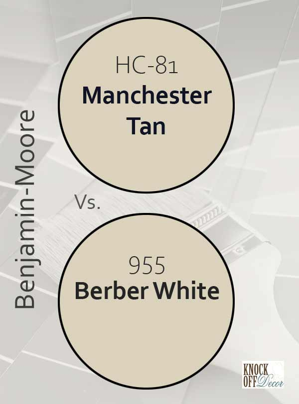 manchester tan vs berber white