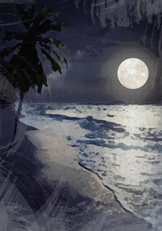 moon night beach tree