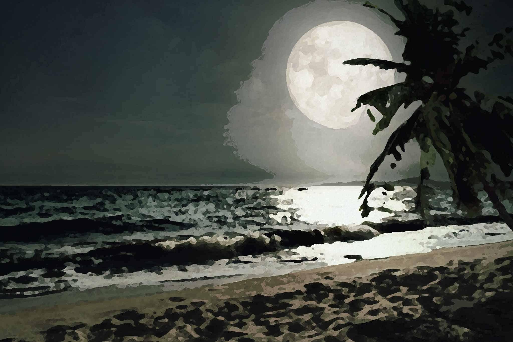moon night beach