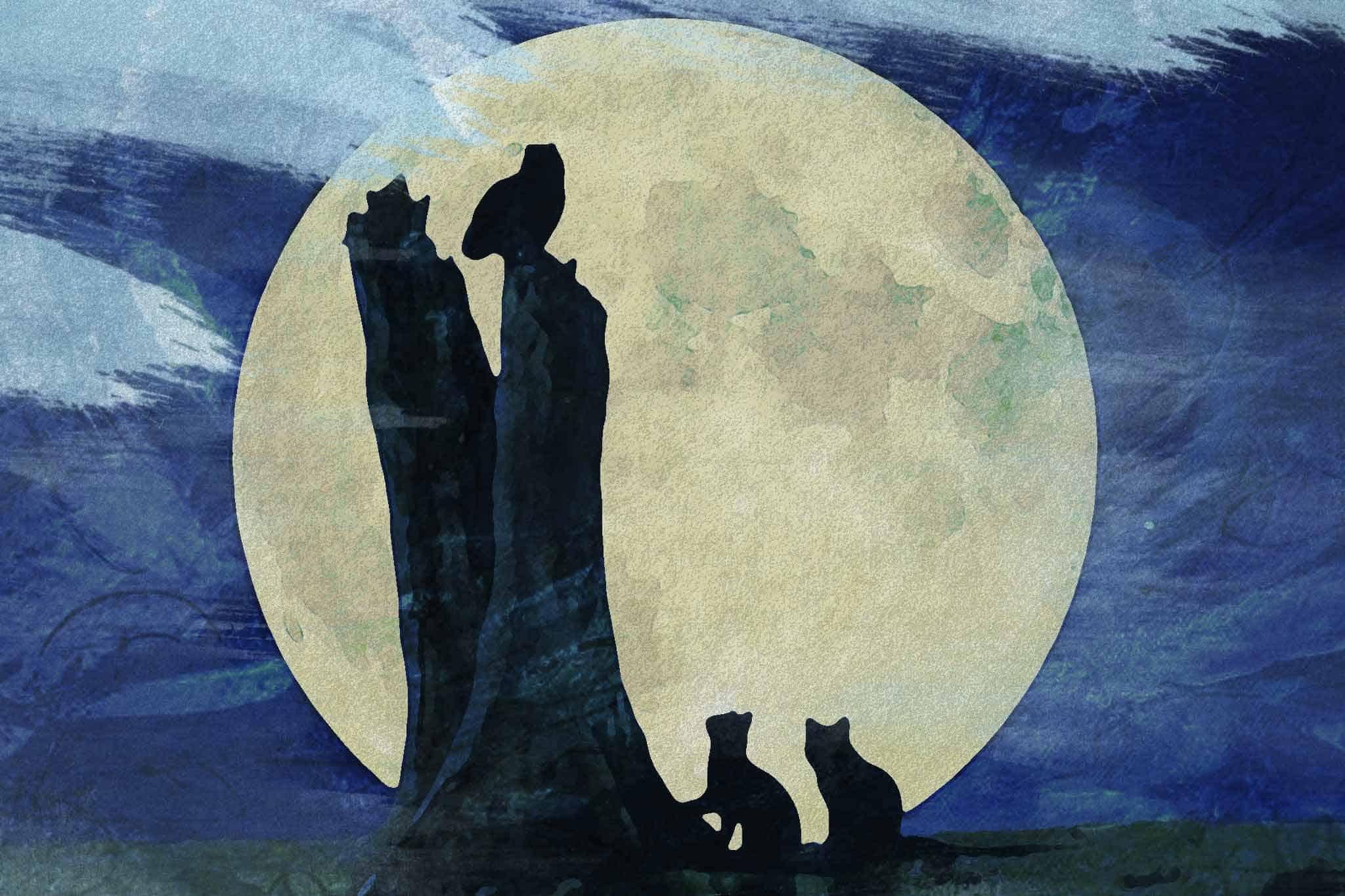 moon night owl wolf
