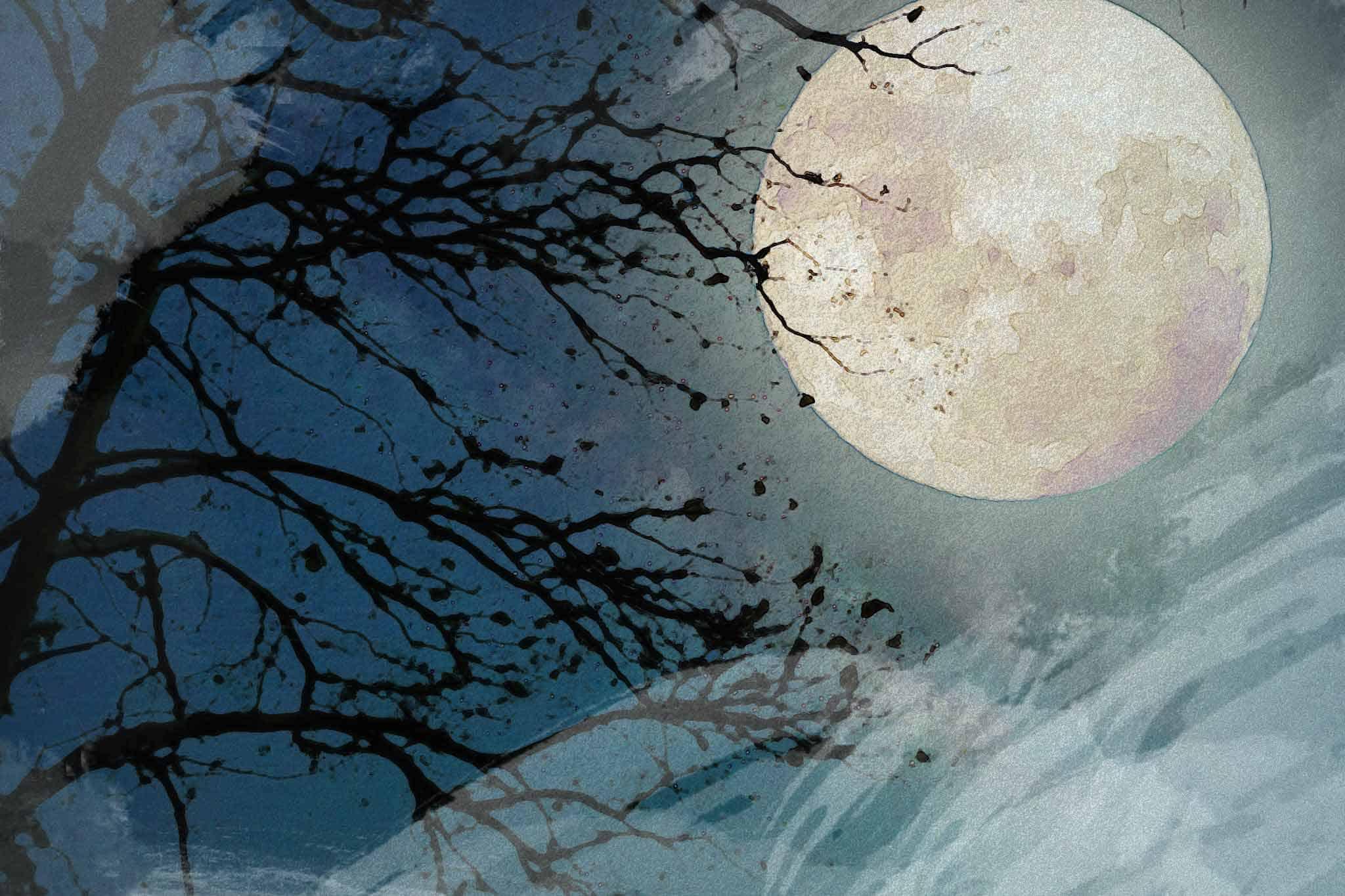 moon night tree blue