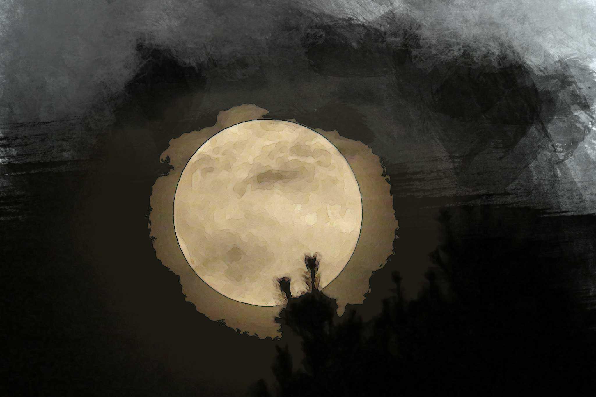 moon night tree golden