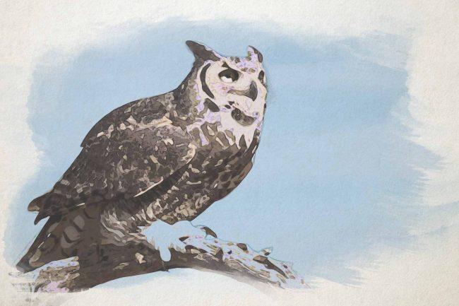 owl seating ash blue