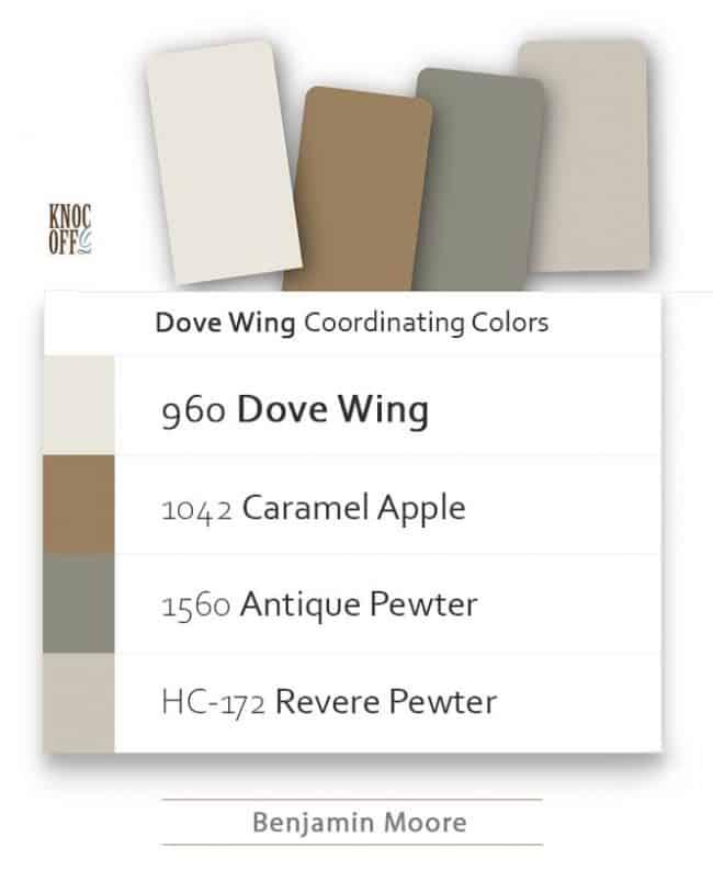 paint dove wing coordination