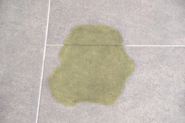 pet pee on concrete tiles