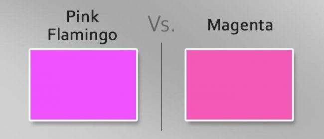 pink flamingo vs magenta