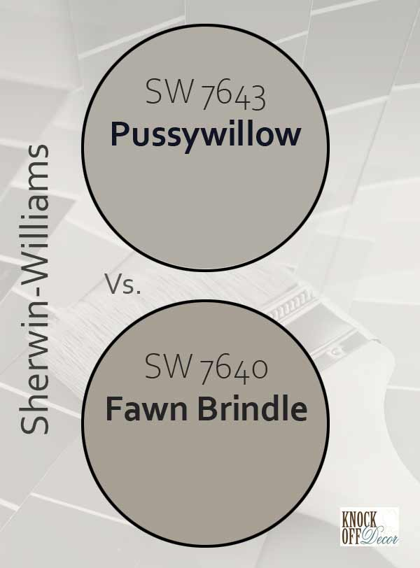 pussywillow vs fawn brindle