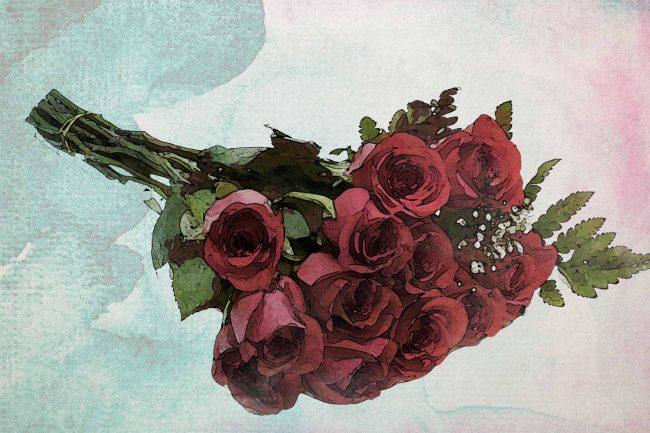 rose red flower green leaf