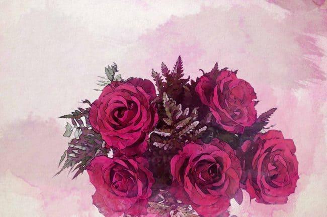 rose red flower leaf bouquet