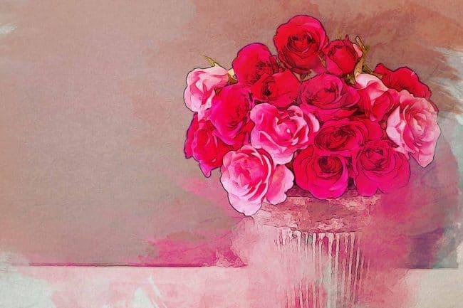 rose red pink vase
