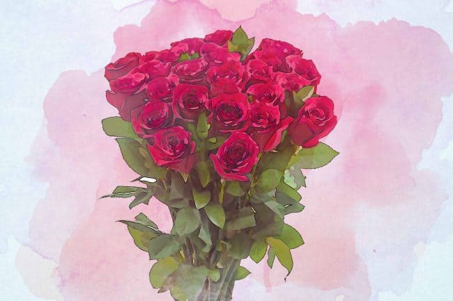 rose red small bouquet leaf