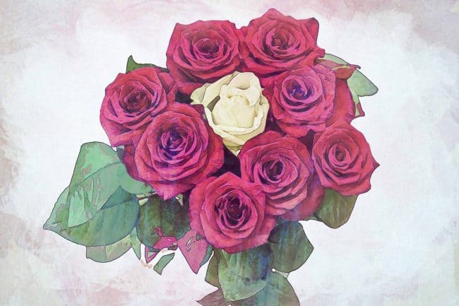 rose red white small bouquet