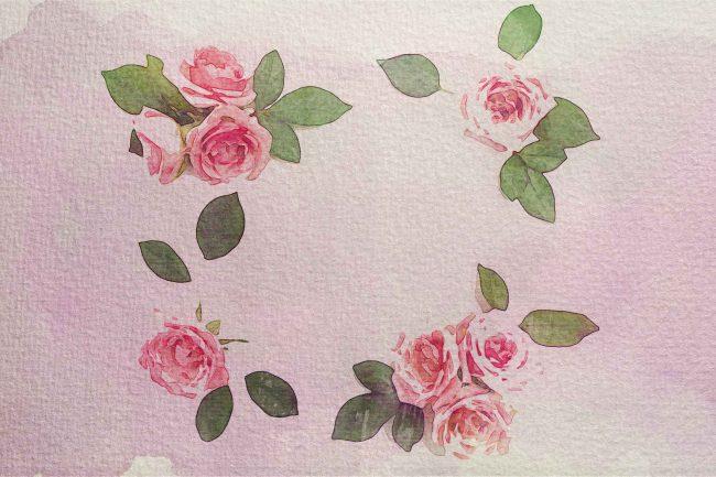 rose ring wc