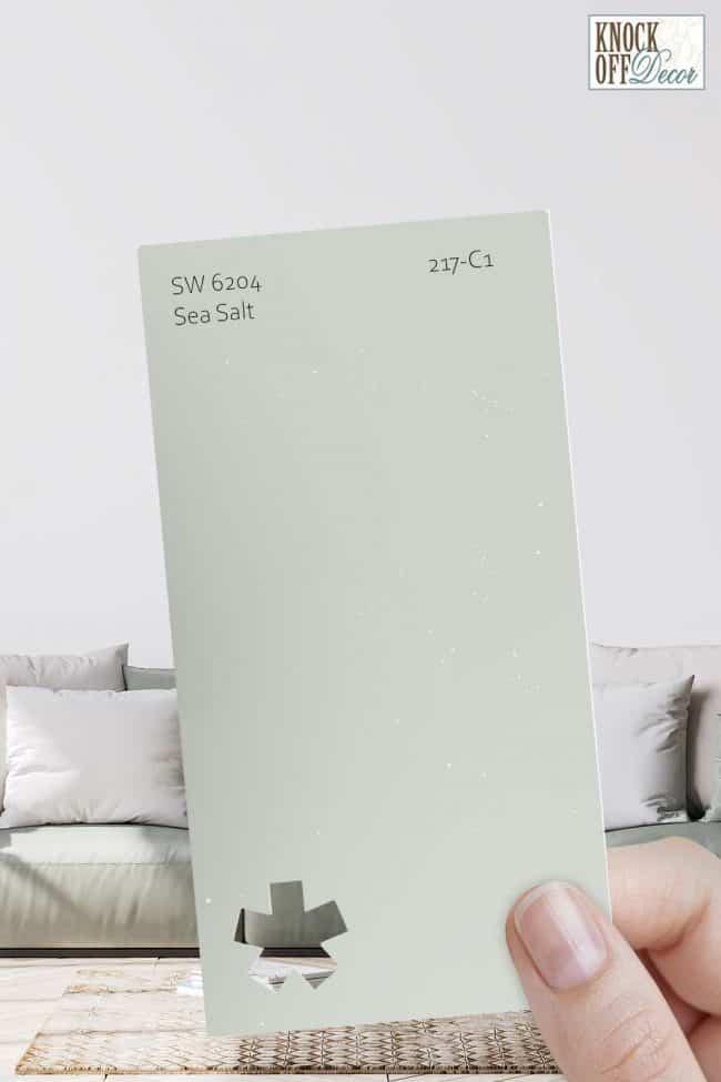 sea salt example rm