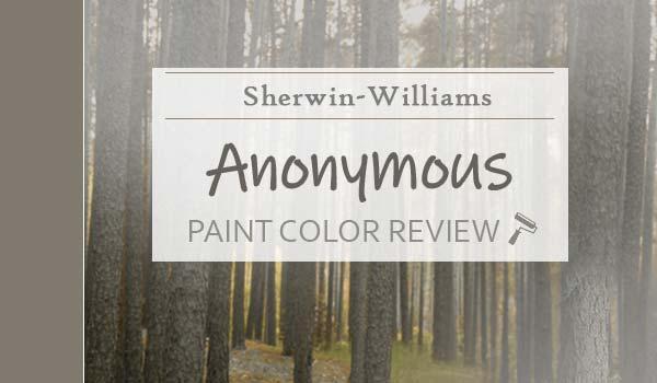 sw anonymous paint color review