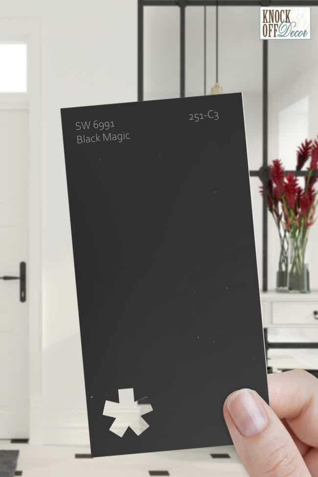 sw black magic paint chip