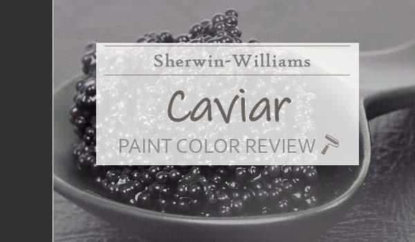 sw caviar color review