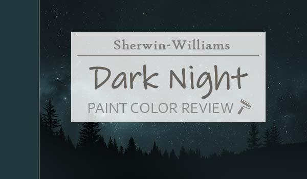 sw dark night review