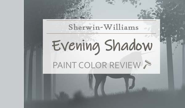 sw evening shadow featured image