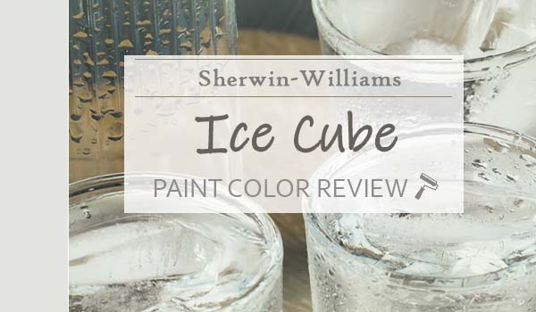 sw ice cube featured image